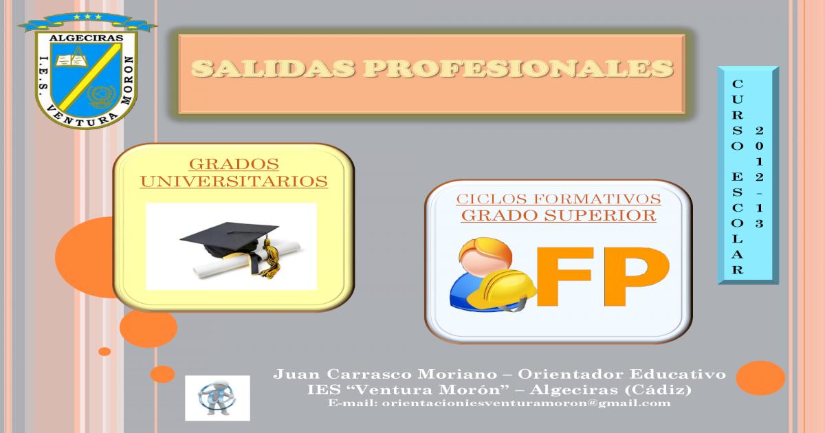 Salidas Profesionales Pdf Document