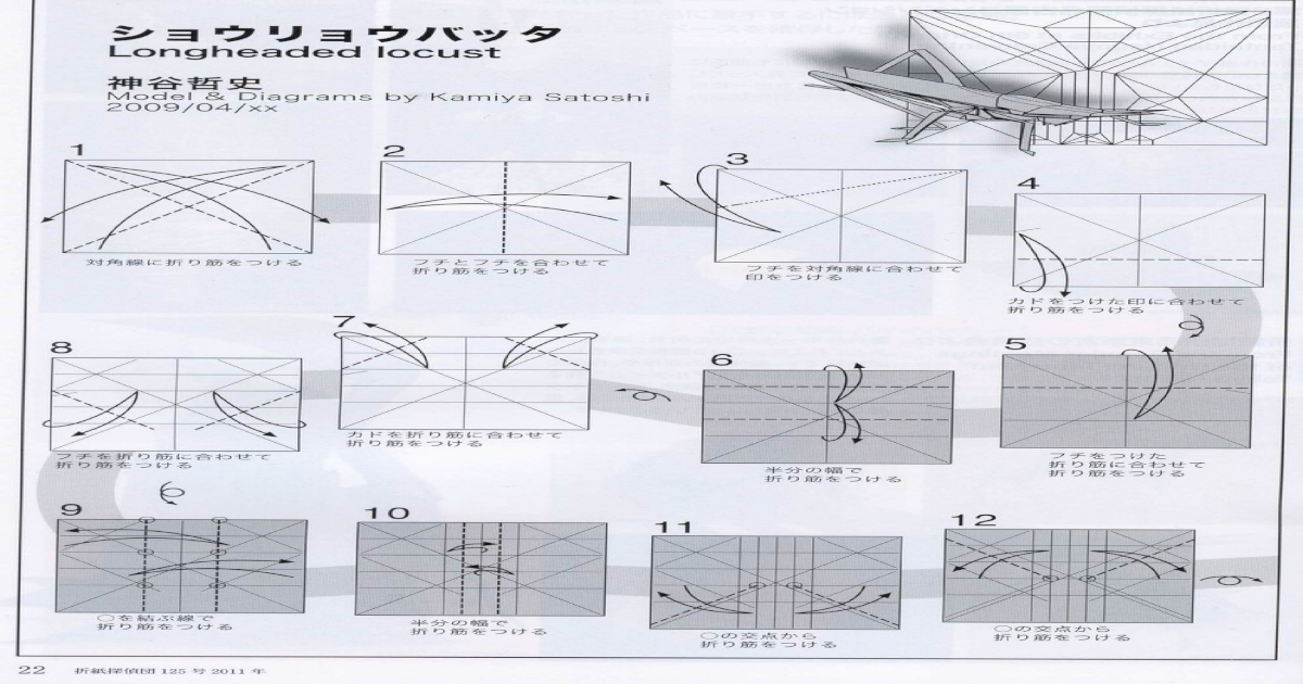 Diagram Longheaded Locust Satoshi Kamiya Pdf Document